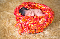 Emily Hall Photography - Orion - Newborn-8300