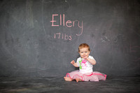 Emily Hall Photography - Ellery - 1 year-3941