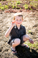 Emily Hall Photography - Hammer Family-0447