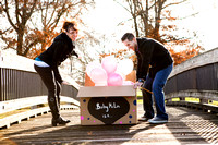 Emily Hall Photographer - McLin Gender-Name Reveal-5764