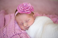 Emily Hall Photography - Newborn Portraits - Margaret-8908