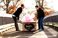 Emily Hall Photographer - McLin Gender-Name Reveal-5763