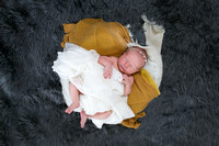 Emily Hall Photography - Newborn Photos - Kenz-9624