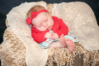 Emily Hall Photography - Charlotte - 3 months-0826
