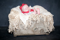 Emily Hall Photography - Charlotte - 3 months-0822